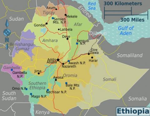 Etiopía: El Tribunal Supremo encarcela acusando de terrorismo. - Página 3 8671a9ac-0b42-4f45-b8e1-899dd12f6827